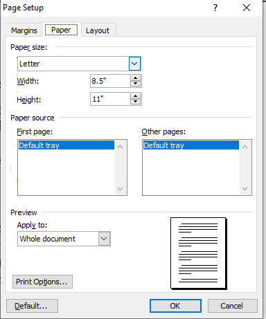 page setup in ms word in hindi